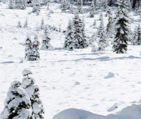 Lyžařská oblast Scuol - fotografie