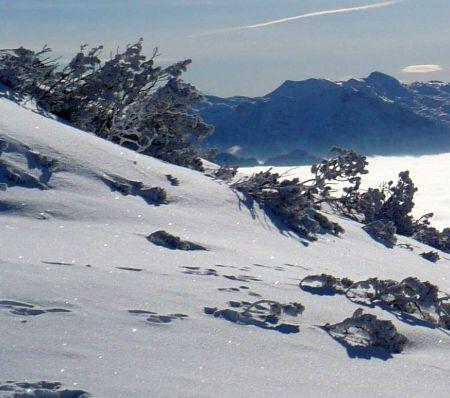 Lyžařská oblast Sedrun - Andermatt - fotografie