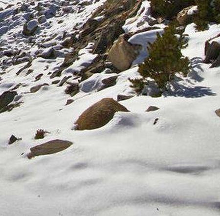 Lyžařská oblast Tannheimer Tal / Reutte - fotografie