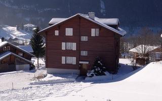 Náhled objektu Im Mettli, Grindelwald, Jungfrau, Eiger, Mönch Region, Szwajcaria
